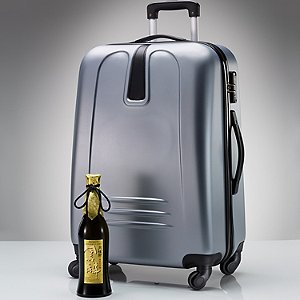 Vino-Voyage TSA-Approved Wine Suitcase