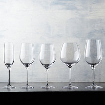 Complete Fusion Classic Wine Glass Collection (Set of 20)