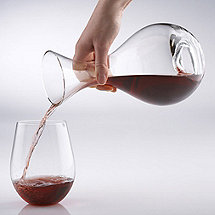 Wine Enthusiast U Decanter and Tumbler Set